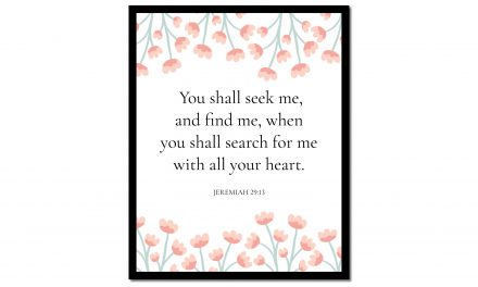 You Shall Seek Me – Jeremiah 29:13 (Scripture Wall Art)