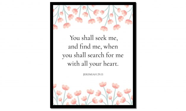 You Shall Seek Me – Jeremiah 29:13 (Scripture Wall Art)