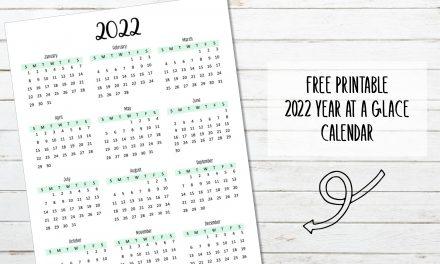 2022 Year at a Glance Calendar
