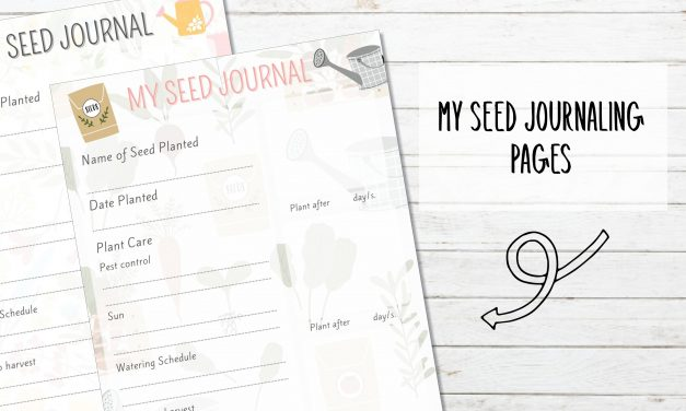 Free Printable Seed Journaling Pages